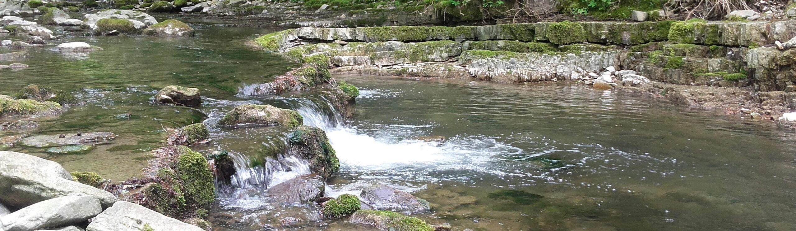 Notions de base sur l'eau : quelques définitions